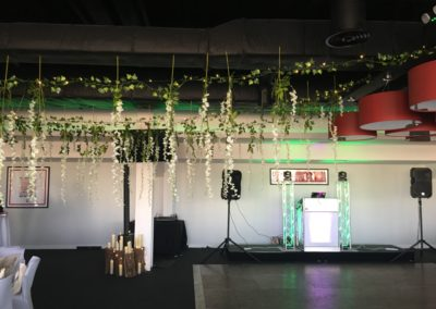 Ceiling decoration