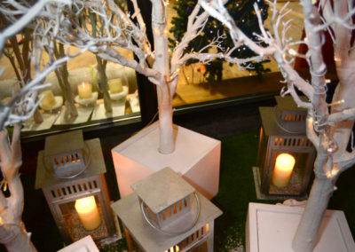 White Tree Hire Dorset